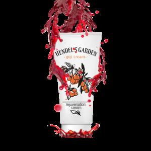Goji Cream Hendels Garden Volledige informatie 2018, ervaringen, review, prijs, kopen, forum - hoe gebruiken? Nederland - bestellen