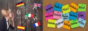 Ling Fluent Slovenija - naročilo, amazon