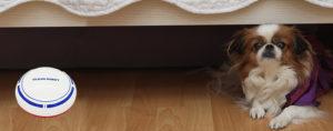 Sweeprobot sesalnik, kako ga uporabljati, kako deluje