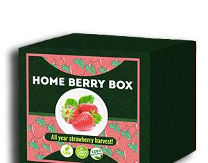 Home Berry Box conjunto de cultivo de fresa - comentarios de usuarios actuales 2020 - cómo usarlo, como funciona, opiniones, foro, precio, donde comprar, mercadona - España